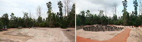Landscaping at the tree site